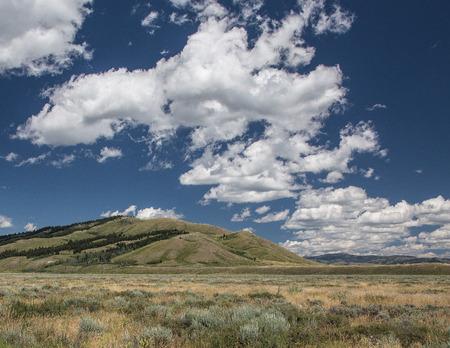 teton: Grasslands, Grand Teton National Park, Wyoming