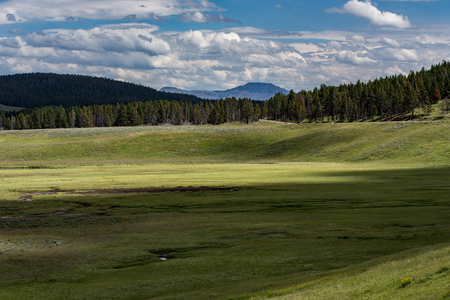 hayden: Hayden Valley, Yellowstone National Park, Wyoming. Stock Photo