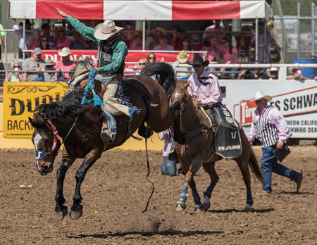 red bluff: Full Flung Rodeo Cowboy, Red Bluff Round Up, California Editorial