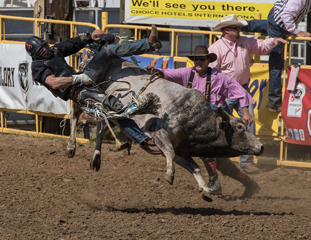 red bluff: Bull Rider Gets Thrown,  Red Bluff Round Up, California