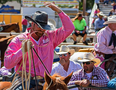 bucking bronco: Ready For The Calf, Red Bluff Round Up, California