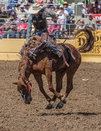 red bluff: Looking Good on the Horse, Red Bluff Round Up, California
