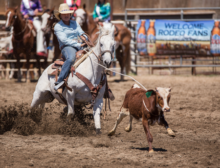 Calf Roping Cowgirl,  Cottonwood Rodeo, California