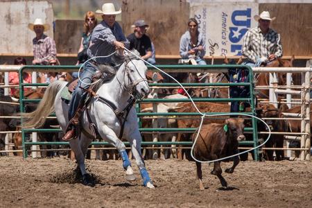 bucking bronco: Calf Roping Cowgirl,  Cottonwood Rodeo, California