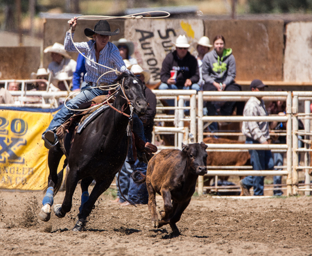 rodeo cowgirl: Calf Roping Cowgirl,  Cottonwood Rodeo, California
