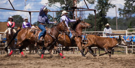 cottonwood: Team roping,  Home Stretch Gallop,   Cottonwood Rodeo, California