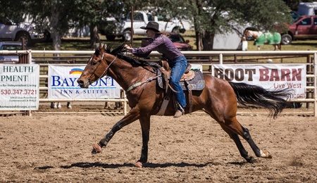 cottonwood: Home Stretch Gallop,   Cottonwood Rodeo, California