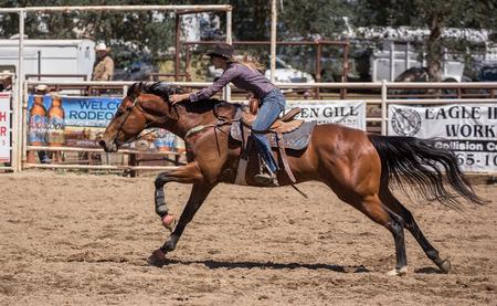 pima: Home Stretch Gallop,   Cottonwood Rodeo, California