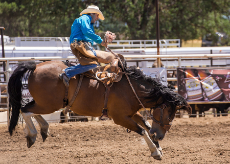 bucking bronco: Cowboy Holds on tight at the Cottonwood Rodeo, California Editorial