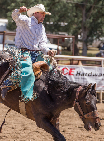 bucking horse: Cowboy rides a bucking horse  at the Cottonwood Rodeo, California Editorial