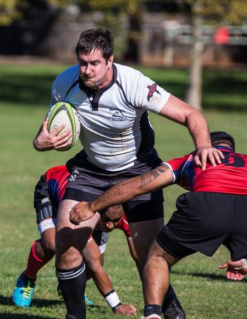 highlander: Un Highlander Shasta en el flojo contra Sacramento Blackhawks en un torneo de rugby en Redding, California 8 de noviembre de 2014. Editorial