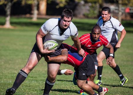 highlander: Un blanco Shasta Highlander en el flojo contra Sacramento Blackhawks en un torneo de rugby en Redding, California 8 de noviembre de 2014.