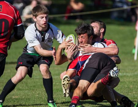 highlander: Un blanco Shasta Highlander se abord� por un Sacramento Blackhawk en un torneo de rugby en Redding, California. Foto tomada en: November 08th, 2014