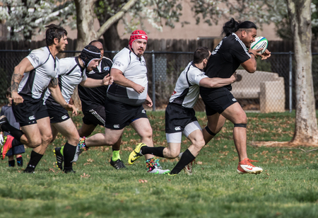 highlanders: Rugby action with the Shasta Highlanders against the Redwood Sharks of Santa Rosa.