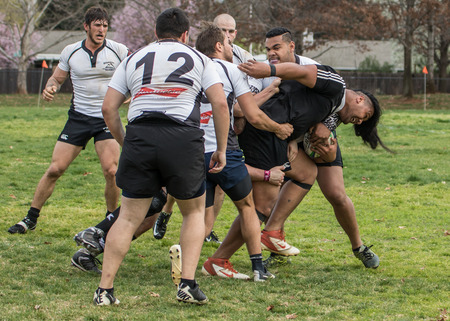 highlanders: Redding, California: Rugby action with the Shasta Highlanders against the Redwood Sharks of Santa Rosa. Editorial
