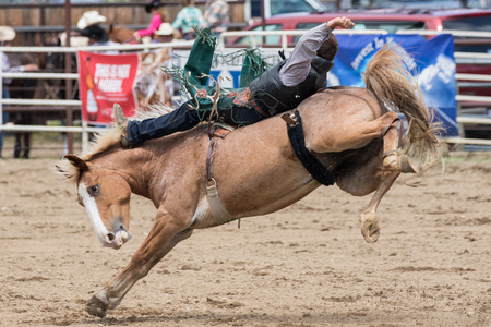 Rodeo action at the Cottonwood Rodeo on Mother's Day in northern California.