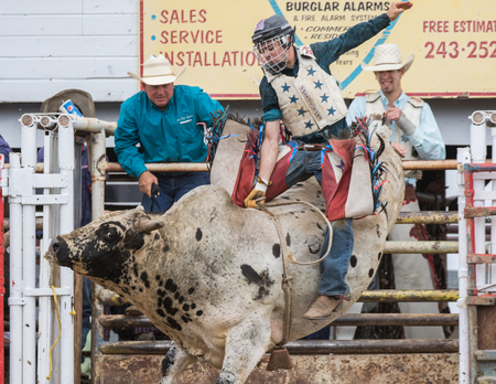 Bull riding action at the Cottonwood Rodeo in northern California on May 8th, 2016.