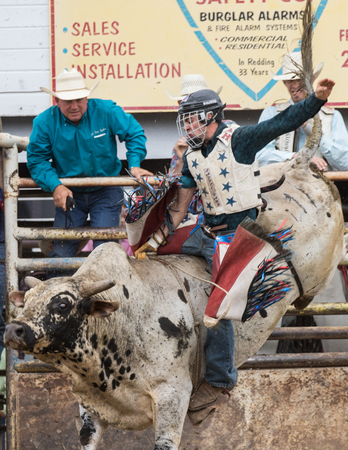 bucking bronco: Bull riding action at the Cottonwood Rodeo in northern California on May 8th, 2016.