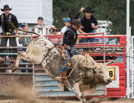 Rodeo action at the Cottonwood Rodeo in Cottonwood, California on May 8th, 2016. Editorial
