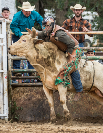 pima: Rodeo action at the Cottonwood Rodeo in Cottonwood, California on May 8th, 2016.
