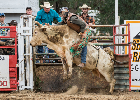 cottonwood: Rodeo action at the Cottonwood Rodeo in Cottonwood, California on May 8th, 2016.