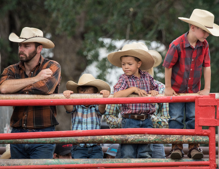 Cowboys watching the Cottonwood Rodeo in Cottonwood, California. Editorial