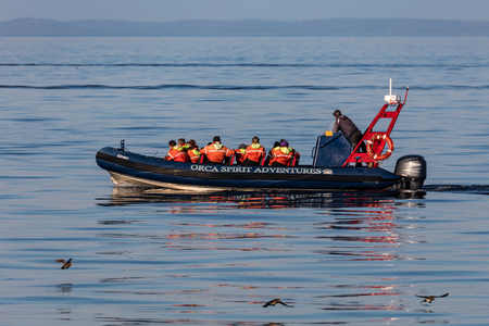 Whale watching for orcas in the  Strait of Juan de Fuca, British Columbia, Canada.