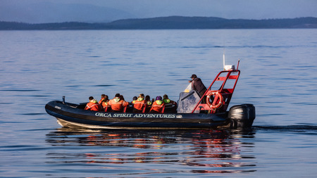 whale watching: Whale watching in Alaska.