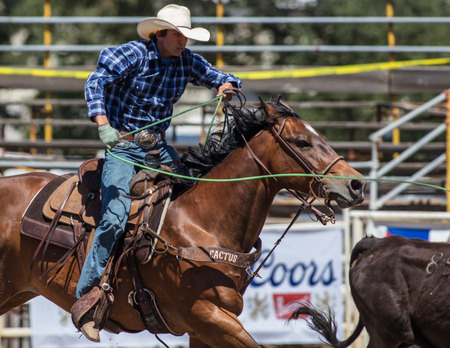 Rodeo action at the Cottonwood Rodeo in California.