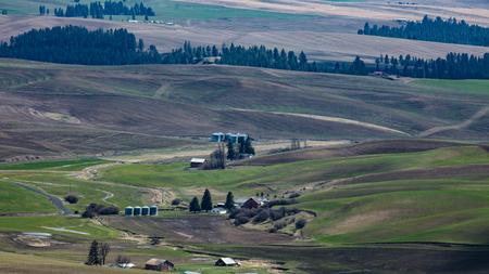 Farmland of the Palouse region of Eastern Washington