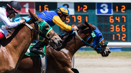 Horse racing action at the Cal Expo Track  in Sacramento, California. July 17, 2017.