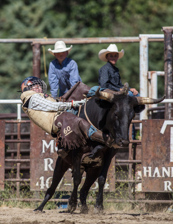 Rodeo action at the Scott Valley Pleasure Park Rodeo in Etna, California.