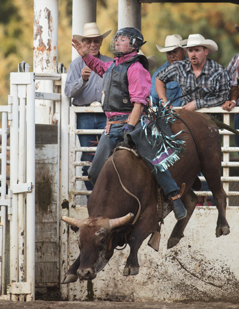 Rodeo action at the Scott Valley Pleasure Park Rodeo in Etna, California. Editorial