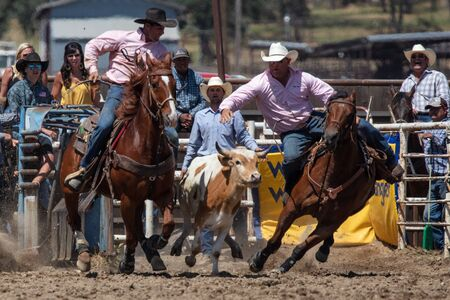 Rodeo action at the Cottonwood Rodeo in Northern California.