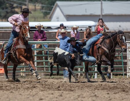 Softball action with Rodeo action at the Cottonwood Rodeo in Northern California.