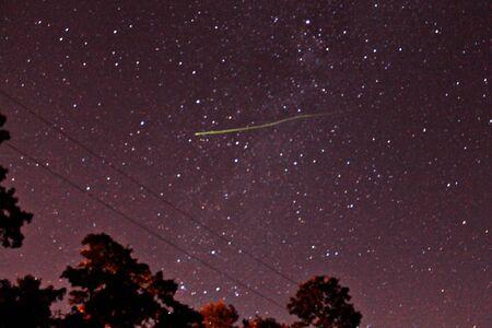 Firefly Against Sky