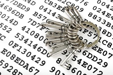 암호화 된 데이터 시트에 실버 키의 무리 스톡 콘텐츠