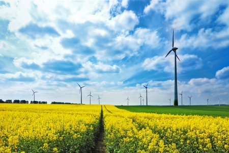 Wind turbines among rapeseed field and green meadows against a cloudy blue sky Stock Photo - 13903126