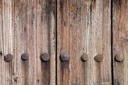 Weathered wooden fence texture with rusty forged nail heads