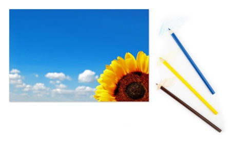Image of sunflower with picturesque cloudy blue sky on a piece of paper with color pencils photo