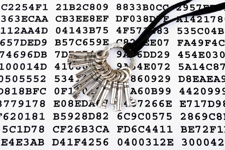 Bunch of silver keys on a sheet with encrypted data Stock Photo - 14437486