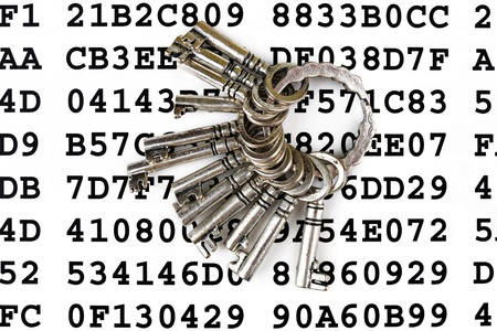 Bunch of silver keys on a sheet with encrypted data Stock Photo - 14555118
