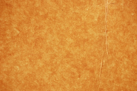 oldish: Old plant-based parchment paper close-up Stock Photo