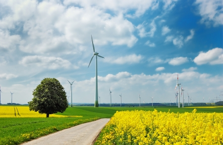 Wind turbines among rapeseed field and green meadows against a cloudy blue sky photo