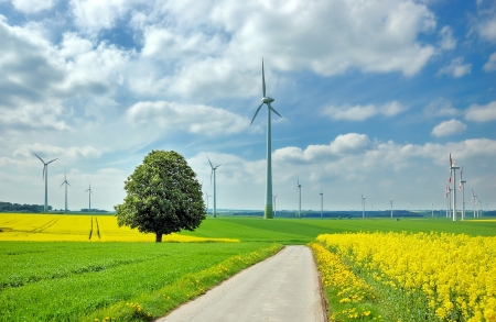 dramatically: Wind turbines among rapeseed field and green meadows against a dramatically overcast sky