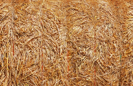 Abstract background of a tightly packed bale of straw photo
