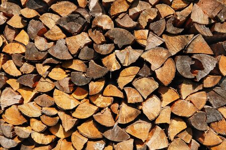 Pile of wooden split logs lit by warm evening sunlight Stock Photo - 16484702