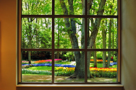 marvellous: View from the window at the flowering Keukenhof Garden in the beautiful sunny morning