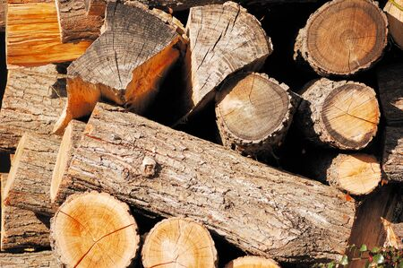 wood cut: Pile of wood cut for fireplace Stock Photo