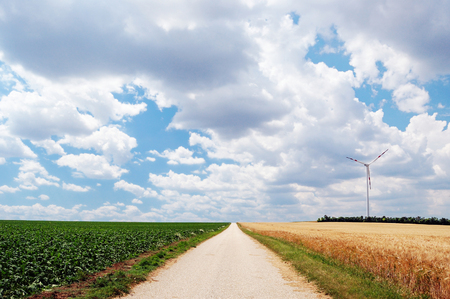 unpaved road: Countryside unpaved road between the fields
